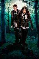 Постер сериала Волчья кровь