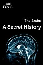 Постер сериала Мозг. Тайны сознания