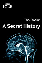 Мозг. Тайны сознания