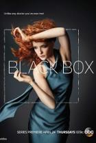 Постер сериала Черный ящик