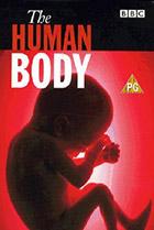 Постер сериала Тело человека