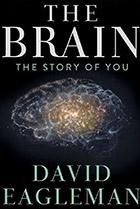 Мозг с Дэвидом Иглменом