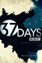 37 дней