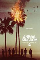 Постер сериала Царство животных